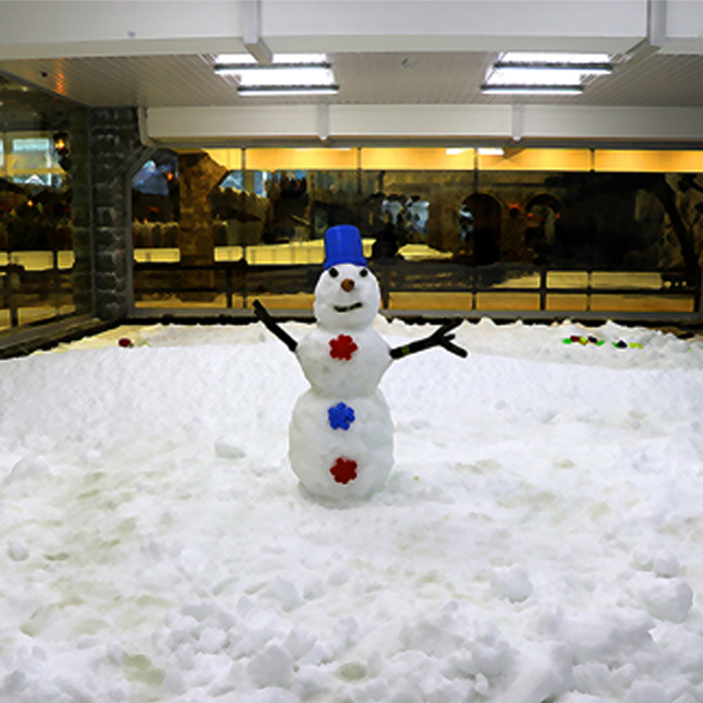 ice city snow playground